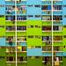 Coloured tenements