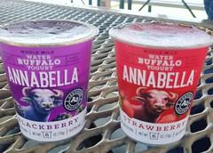 Water Buffalo Yogurt