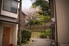 Photo:Street in Kanazawa By sunoochi