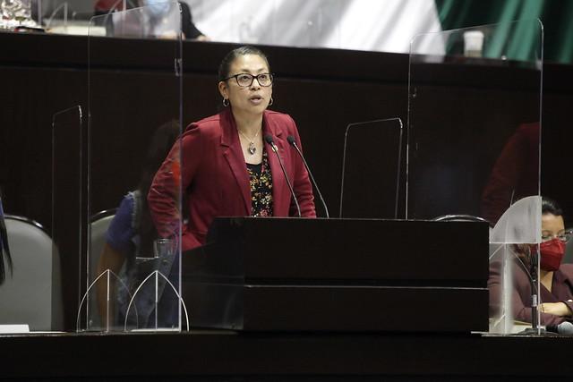 13/04/2021 Tribuna Diputada Erika Vanessa Del Castillo Ibarra