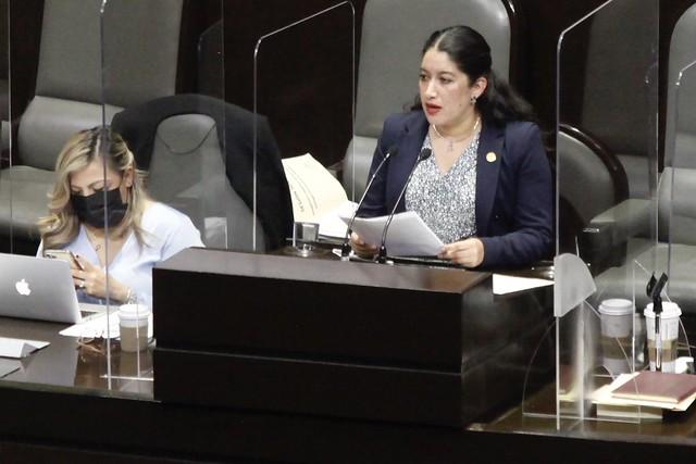 14/04/2021 Tribuna Dip Rocio Villarauz Ley Hidrocarburos