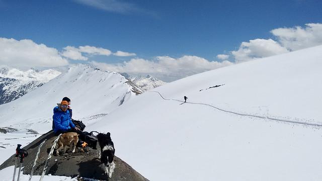 Aufstieg zur Bethlemihütte am Kasbek, 5047 m.