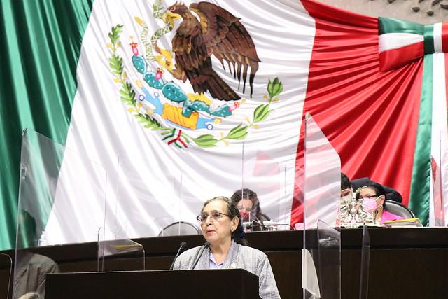 14/04/2021 Tribuna Diputada Estela Núñez