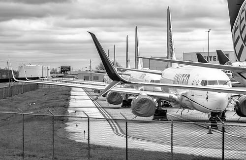 The No-Flight Line
