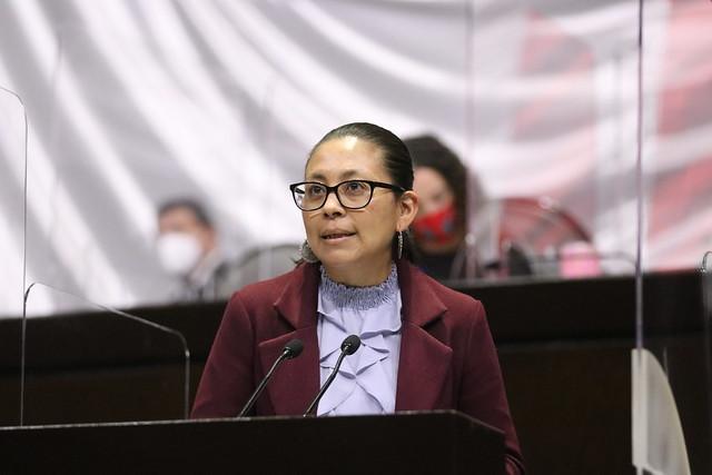 14/04/2021 Tribuna Diputada Vanessa Del Castillo