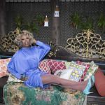 Honey in Blue in My Courtyard -333