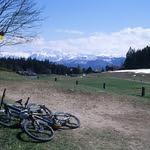 Bike Duo  (FM3a / Ektachrome)