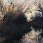 Contrast of Seasons - Winter