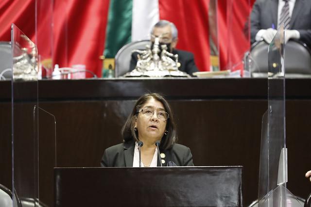 21/04/2021 Tribuna Diputada Miroslava Sánchez Galván