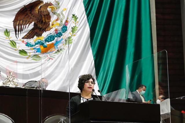 21/04/2021 Tribuna Diputada Anita Sánchez Castro