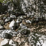 Eaton Canyon Falls in Alta Dena -374