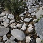 Eaton Canyon Falls in Alta Dena -314