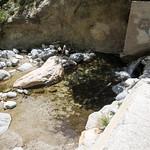 Eaton Canyon Falls in Alta Dena -302