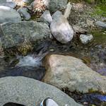 Eaton Canyon Falls in Alta Dena -382