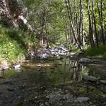 Eaton Canyon Falls in Alta Dena -384