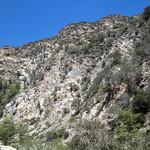 Eaton Canyon Falls in Alta Dena -312