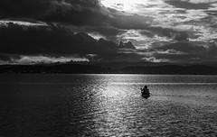 Lake Macquarie-Belmont