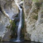 Eaton Canyon Falls in Alta Dena -321