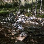 Eaton Canyon Falls in Alta Dena -308