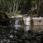 Eaton Canyon Falls in Alta Dena -304