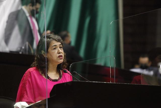 28/04/2021 Tribuna Dip. Adela Piña Bernal