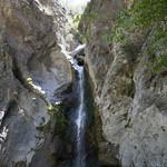 Eaton Canyon Falls in Alta Dena -327