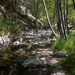 Eaton Canyon Falls in Alta Dena -309