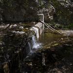 Eaton Canyon Falls in Alta Dena -306