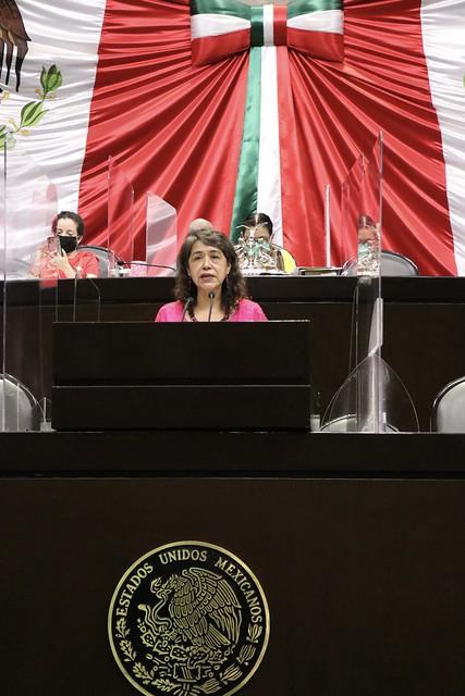 28/04/2021 Tribuna Diputada Adela Piña Bernal