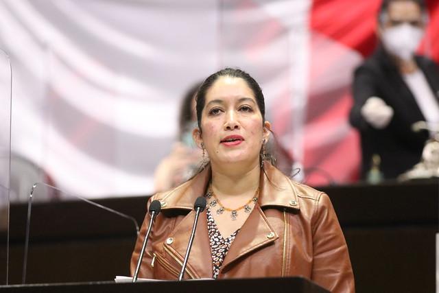 29/04/2021 Tribuna Diputada Rocío Villarauz