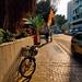 Bike Shade
