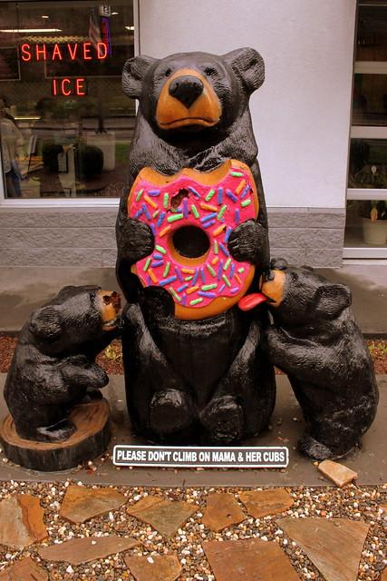 Photo:Black bears like a donut - Gatlinburg By SeeMidTN.com (aka Brent)