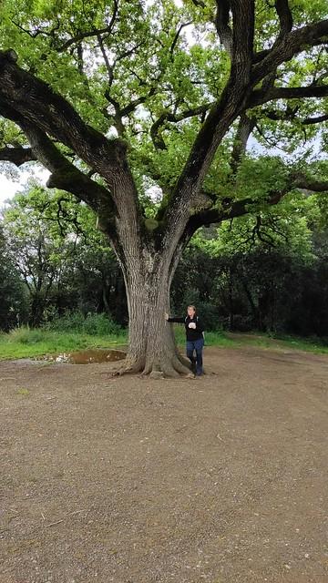 Photo:Excursió de Marxa Nòrdica - La Plana de Vilamajor 4 By Centre Europeu de Barcelona