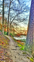 MN Nature = Simple yet beautiful