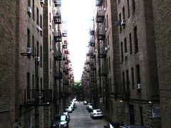 Pelham Parkway neighborhood - Bronx, NY;   August 2013