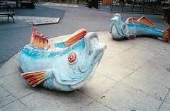 Classon Playground Sprinkler Fish