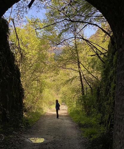 Lungo il percorso dell'ex-ferrovia Spoleto-Norcia