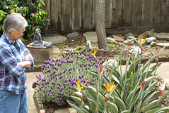 Melody in backyard of our San Francisco home 20210506-114441 cw50 C4