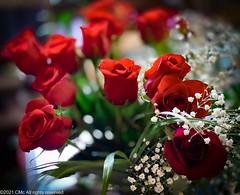 Flowers for Zee...