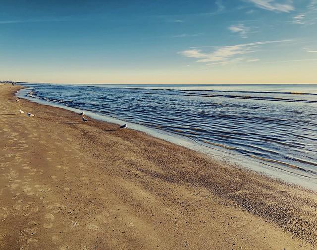 Photo:Early Morning Walk - Hilton Head Beach, SC By cpmishra123
