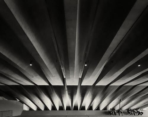 #4697 Opera House Sydney