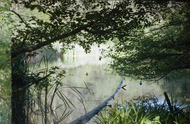 Photo:Jewel Lake (Berkeley, Calif.) By jimmy.hardwick