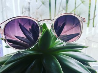 134. Glassy