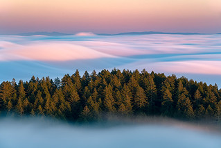 Marin County, USA