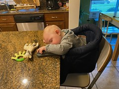 Sleeping on kitchen island table