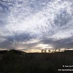 Flora, fauna, paisaje y luna en las lagunas de La Guardia (Toledo) 21-5-2021