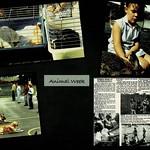 50 Years of Tawhai School 22.5.21_015