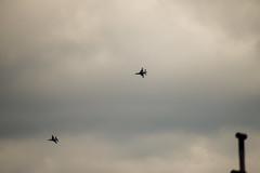 Thunderbirds 2021