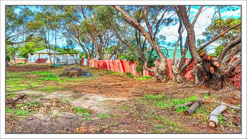 Ramshackle Fence, Pointclaire Street, Bolgart, Western Australia