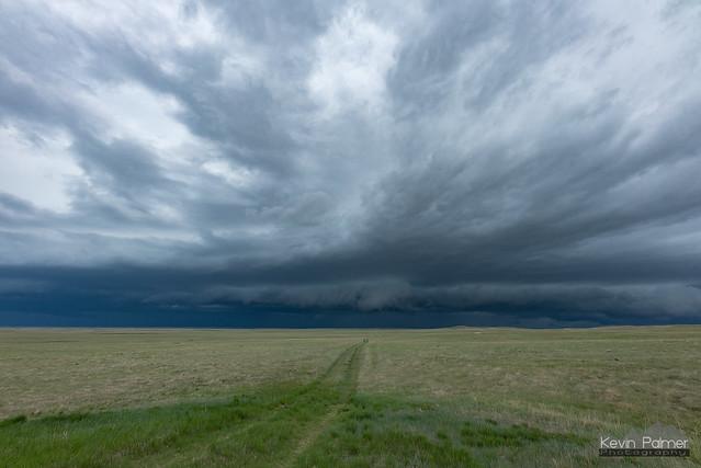 Prairie and Shelf